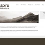 Website design and development for Apiru International by Airstrike Quintet